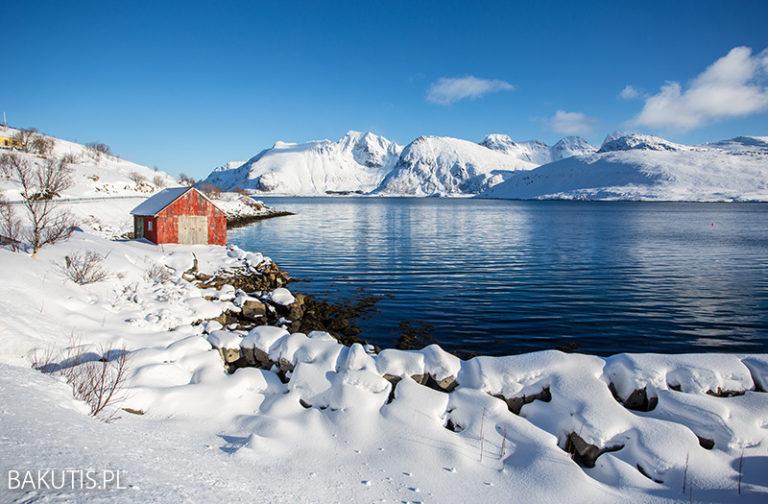 Zima na Lofotach 2020 [film]